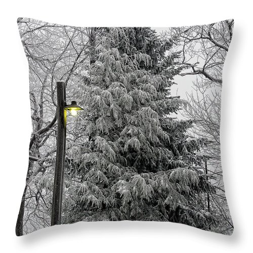 Snow Throw Pillow featuring the photograph A Light Snow by Lois Bryan
