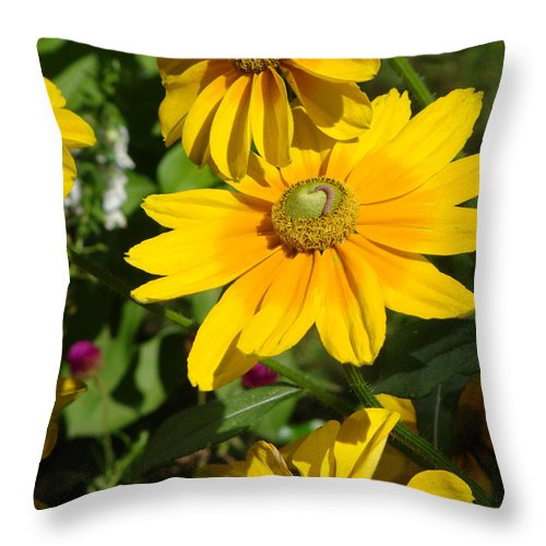 Flowers Throw Pillow featuring the photograph A Little Visiter by Ira Shander