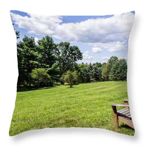 Park Throw Pillow featuring the photograph A Lone Chair In August by Diana Weir