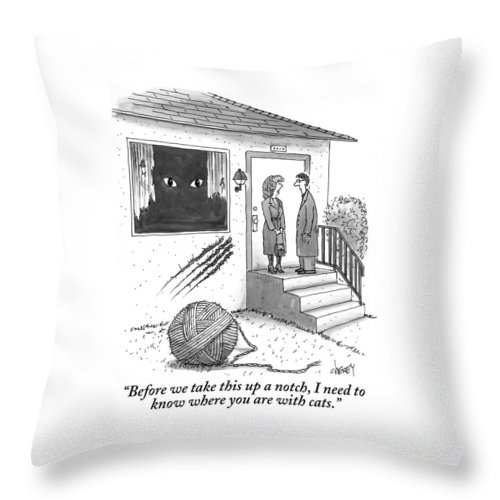Cats Throw Pillow featuring the drawing A Man And A Woman Stand On The Stoop by Tom Cheney