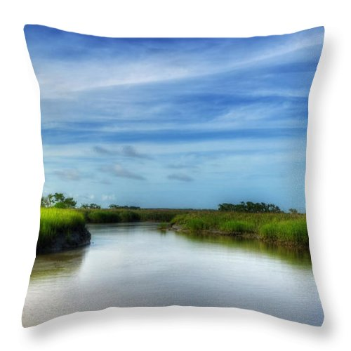 Marsh Throw Pillow featuring the photograph A Marsh At Jekyll Island by Greg and Chrystal Mimbs