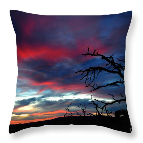 New Mexican Sunset Throw Pillow featuring the photograph A Murmur Of Fuschia by Susanne Still