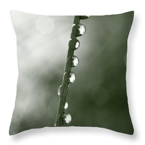 Abstract Throw Pillow featuring the photograph A Necklace Of Raindrops by Ulrich Kunst And Bettina Scheidulin