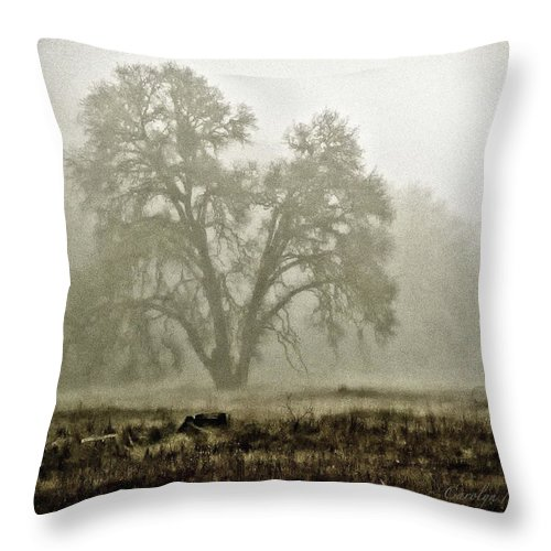 Oak Trees Throw Pillow featuring the photograph A Old Oak On A Foggy Day by Carolyn Marchetti
