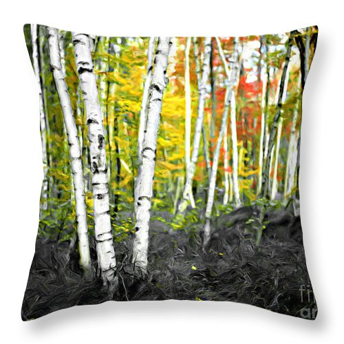 Painting Throw Pillow featuring the photograph A Painting Autumn Birch Grove by Mike Nellums