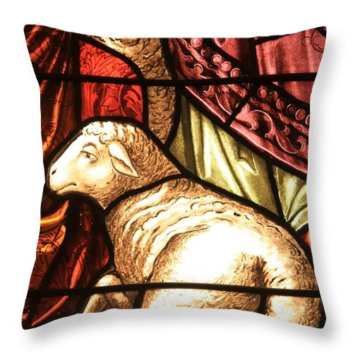Lambs Throw Pillow featuring the photograph A Pair Of Lambs by Adam Jewell