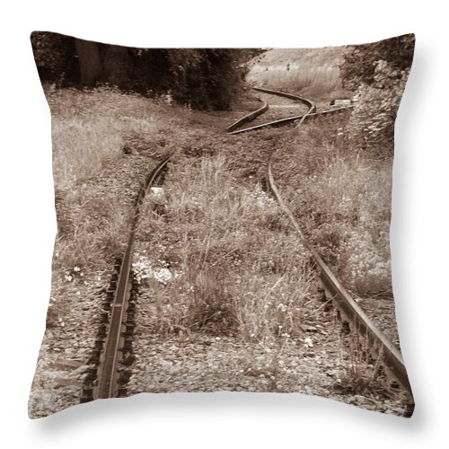 Rail Throw Pillow featuring the photograph A Path Not Taken by Tom Maimran