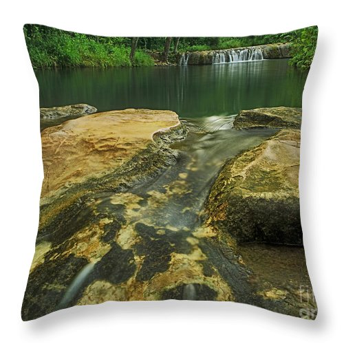 North America Throw Pillow featuring the photograph A Peaceful Early Morning At Little Niagra Waterfall A by Dave Welling