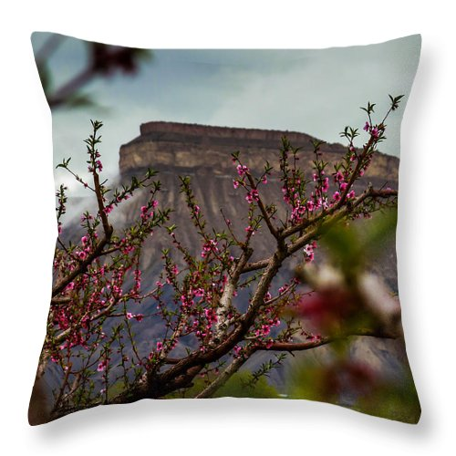 Mt Garfield Throw Pillow featuring the photograph A Peak At Mt. Garfield by Laurie Purcell