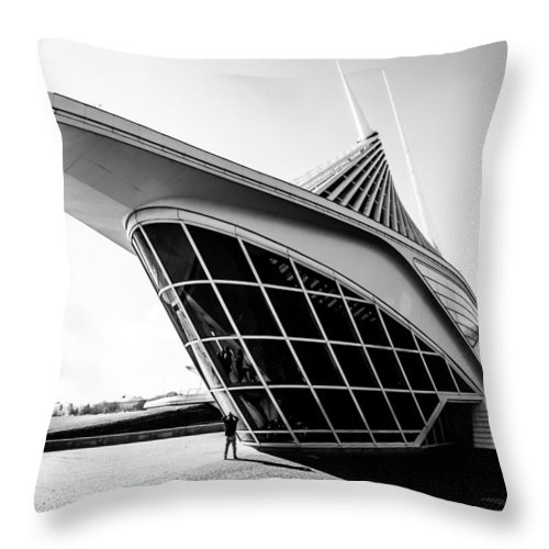 Mam Throw Pillow featuring the photograph A Photographers Perspective by Lauri Novak