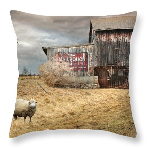 Mail Pouch Throw Pillow featuring the photograph A Sign Of The Times by Lori Deiter