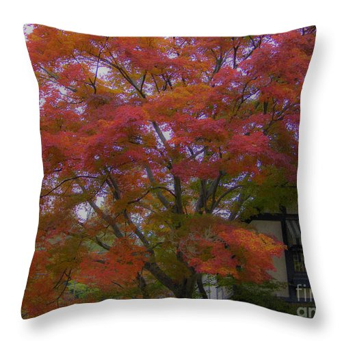 Fall Throw Pillow featuring the photograph A Taste Of Fall by Dale Powell