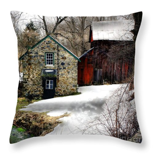 Marcia Lee Jones Throw Pillow featuring the photograph A Time Passing by Marcia Lee Jones