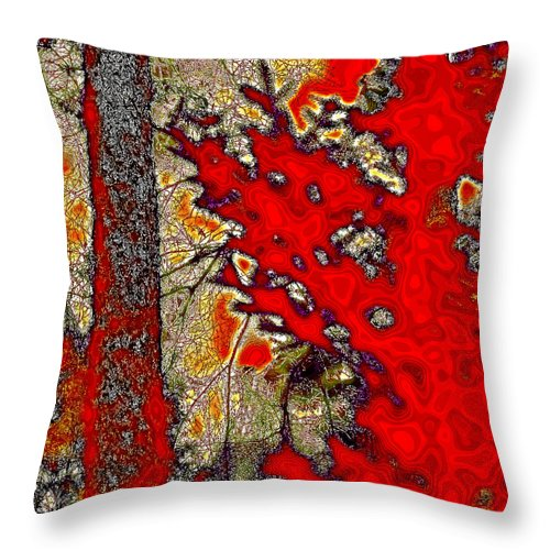 David Patterson Throw Pillow featuring the photograph A Touch Of Autumn Abstract Vii by David Patterson