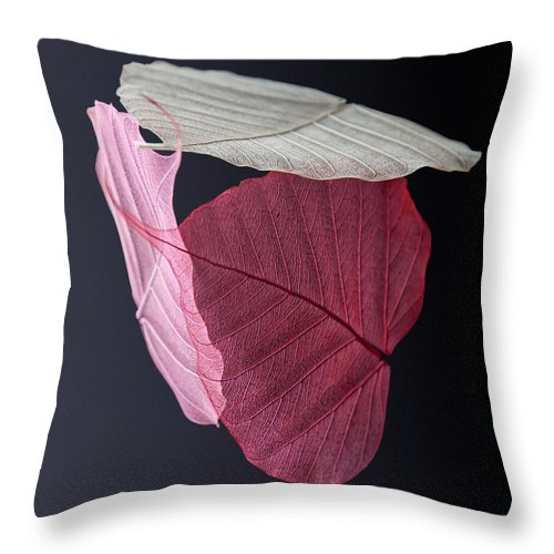 Leaves Throw Pillow featuring the photograph A Trinity Of Leaves by Maggie Terlecki