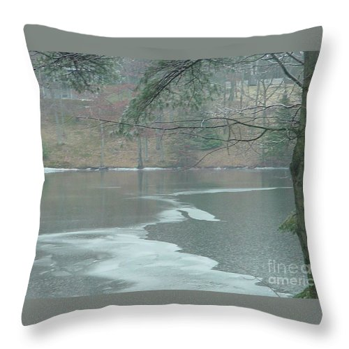 Lake Throw Pillow featuring the photograph A Very Cold Rain by Nancie Johnson