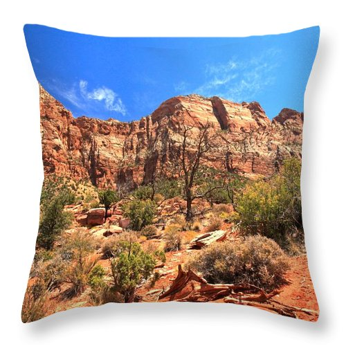 Zion National Park Throw Pillow featuring the photograph A View Along The Watchman by Adam Jewell
