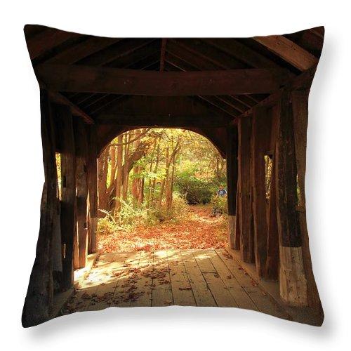 Bridge Throw Pillow featuring the photograph A View Through The Bridge by Robert McCulloch