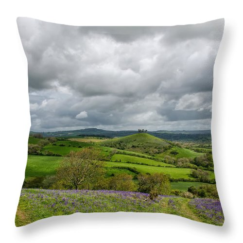 Southwest Throw Pillow featuring the photograph A View To Colmer's Hill by Susie Peek