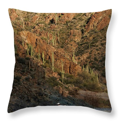 20s Throw Pillow featuring the photograph A Whitewater Rafters Rows His Boat by Kyle George