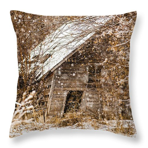 Barns Throw Pillow featuring the photograph A Winter Shed by Edward Peterson