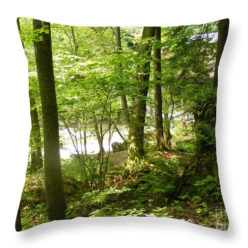 A Hike In The Pennsylvania Woods Near A Stream And Just Through The Throw Pillow featuring the photograph A Woodland Trail by Nancy Kane Chapman
