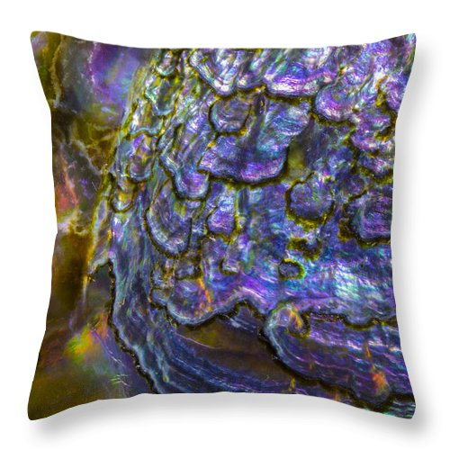 Abalone Shell Throw Pillow featuring the photograph Abalone Shell 6 by Robert Storost