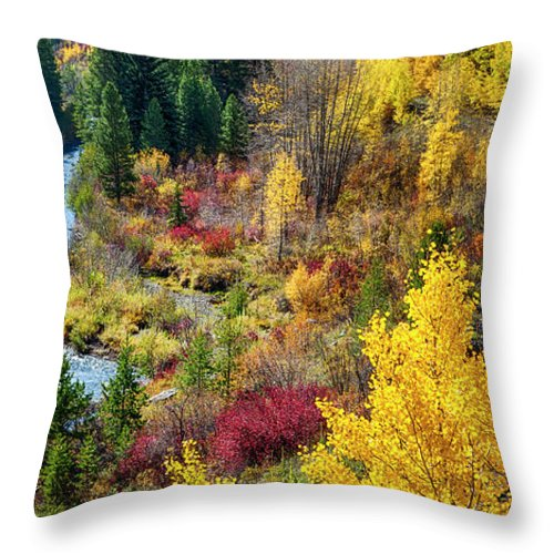 Scenics Throw Pillow featuring the photograph Abandoned Railway by C. Fredrickson Photography