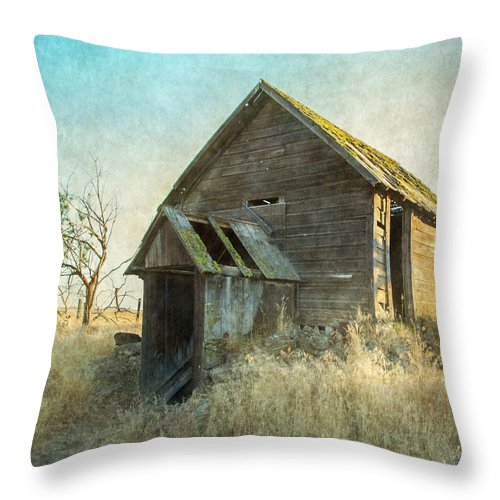 Root Cellar Throw Pillow featuring the photograph Abandoned Root Cellar by Angie Vogel