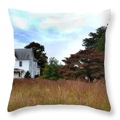 Nature Throw Pillow featuring the photograph Abandoned by Skip Willits
