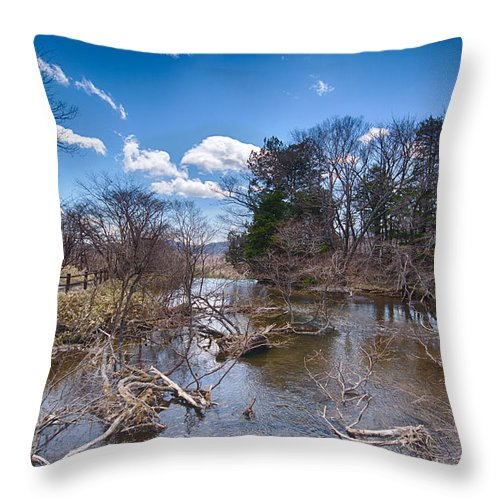 Japan Throw Pillow featuring the photograph Above The Yutaki Falls by Jonah Anderson