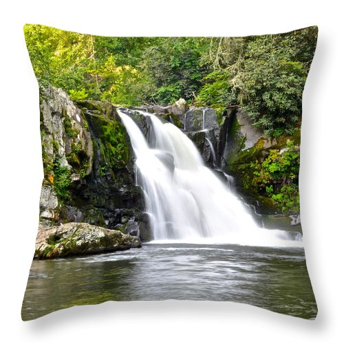 Abrams Throw Pillow featuring the photograph Abrams Falls by Frozen in Time Fine Art Photography