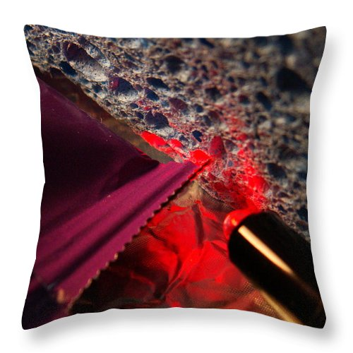 Captivus Brevis Throw Pillow featuring the photograph ...absorbed... by Charles Struse Sr
