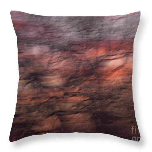 Abstract Throw Pillow featuring the photograph Abstract 10 by Tony Cordoza
