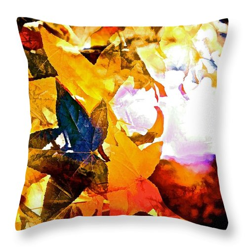 Abstract Throw Pillow featuring the photograph Abstract 111 by Pamela Cooper