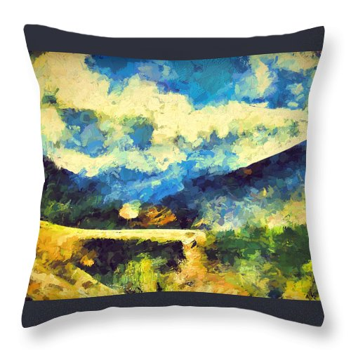 Abstract Throw Pillow featuring the photograph Abstract 46 by Pamela Cooper