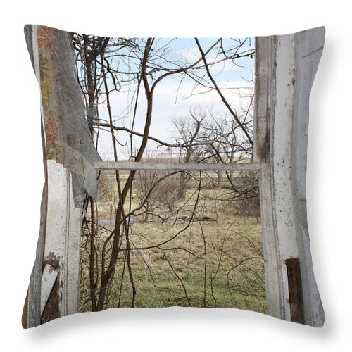 Abstract Throw Pillow featuring the photograph Abstract Despair by JB Stran