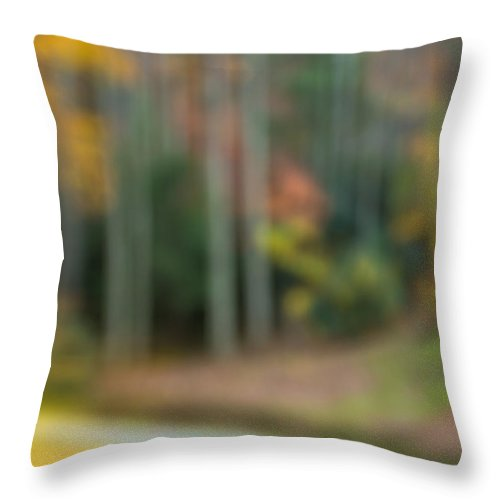 Autumn Throw Pillow featuring the photograph Abstract Fall 2 by Joye Ardyn Durham