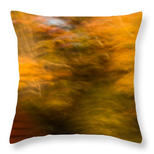 Autumn Throw Pillow featuring the photograph Abstract Fall 3 by Joye Ardyn Durham