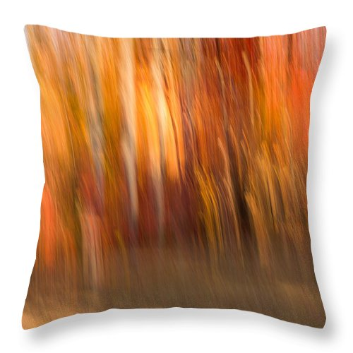 Autumn Throw Pillow featuring the photograph Abstract Fall 6 by Joye Ardyn Durham