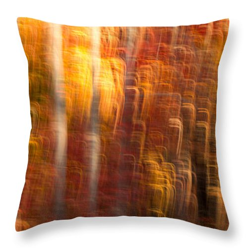 Autumn Throw Pillow featuring the photograph Abstract Fall 7 by Joye Ardyn Durham