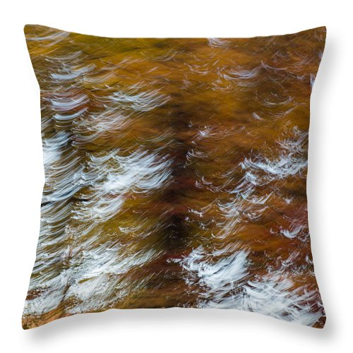 Autumn Throw Pillow featuring the photograph Abstract Fall 9 by Joye Ardyn Durham