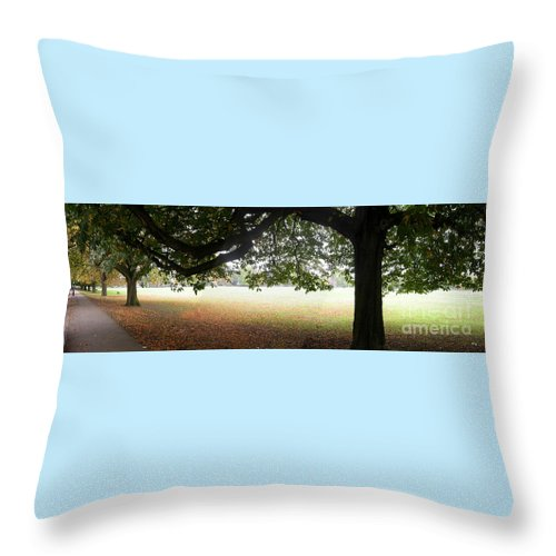Panorama Throw Pillow featuring the photograph Abstract Panorama Of Landscape Triptych by Richard Morris