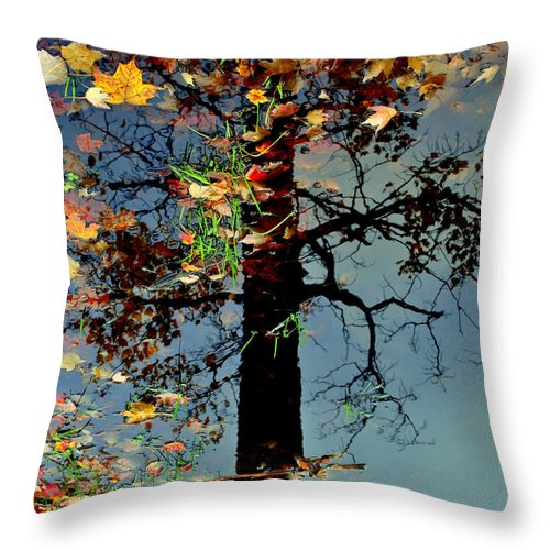 Tree Throw Pillow featuring the photograph Abstract Tree by Frozen in Time Fine Art Photography