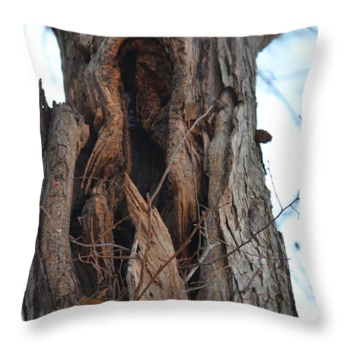 Abstract Winter Tree Throw Pillow featuring the photograph Abstract Winter Tree by Maria Urso