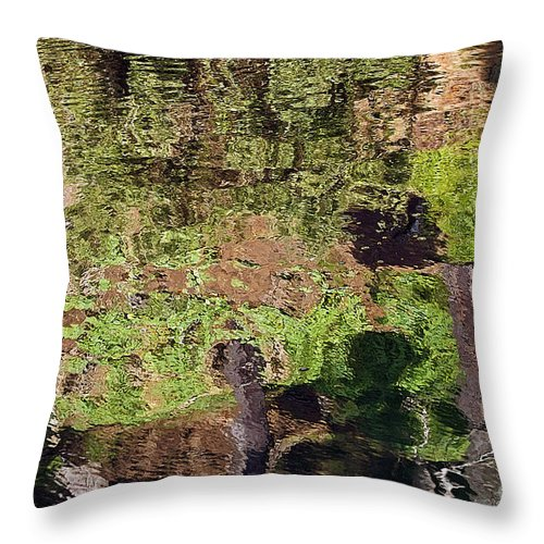 Kate Brown Throw Pillow featuring the photograph Abstracted Reflection by Kate Brown
