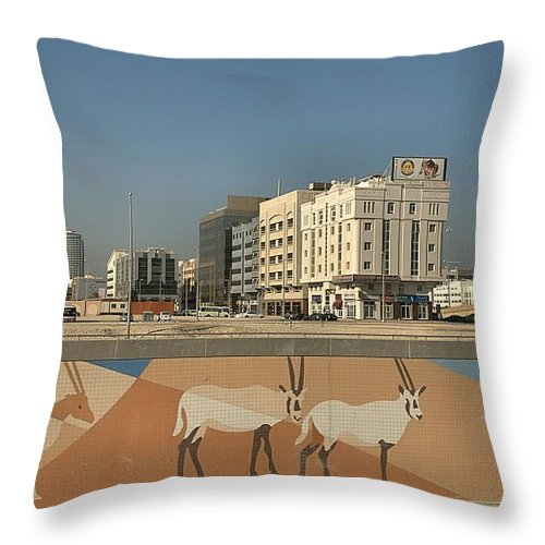 Abu Dhabi Throw Pillow featuring the photograph Abu Dhabi Outskirts by Steven Richman
