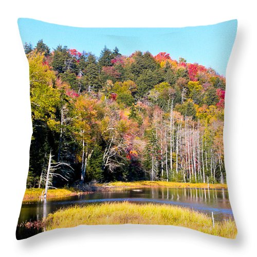 Adirondack's Throw Pillow featuring the photograph Adirondack Color V by David Patterson