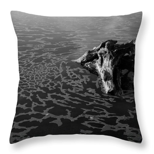 Driftwood Throw Pillow featuring the photograph Adrift by Alex Lapidus