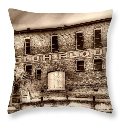 Scenic Tours Throw Pillow featuring the photograph Adluh Flour Sc by Skip Willits